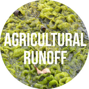 agricultural-runoff