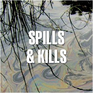 spills & kills
