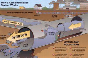 infograph-swimguide