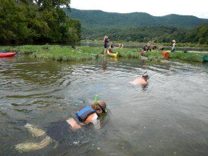 RiverPalooza - Snorkeling