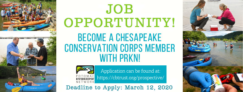 Chesapeake Conservation Corps Job Opportunity