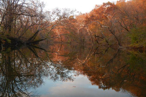 autumn on the Shenandoah