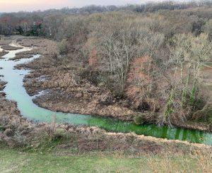 Dyke Marsh Green Spill