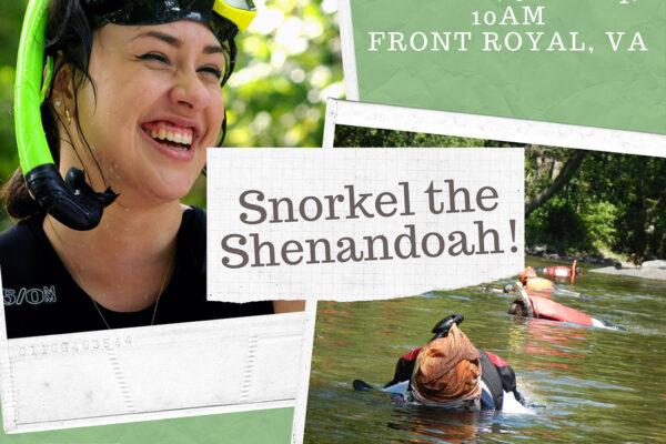 Snorkel the Shenandoah