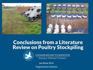 Attachment-2-Summary-of-stockpiling-literature-review_JW-1-6-2020-1