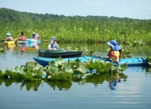 RiverPalooza American Indian Paddle 2